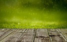 Maak jij al gebruik van regenwater?