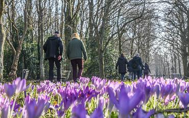 Nieuwe wandelgroep in Hillegom, Lisse en/of Teylingen