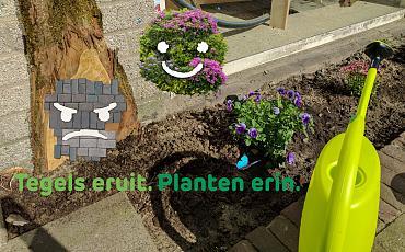 Steenbreek actie, kom tuintegels ruilen voor gratis plantjes!